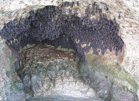 bat_cave2