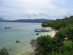 300px-menjangan_island